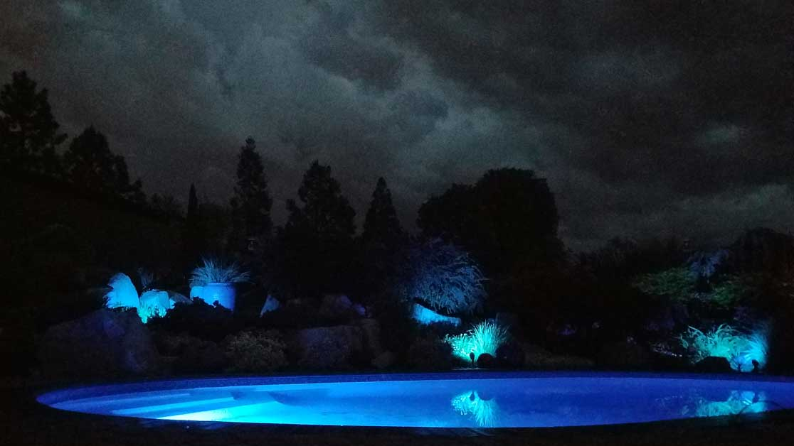 Custom Lighting for Pools and Landscapes by A Plus Pools